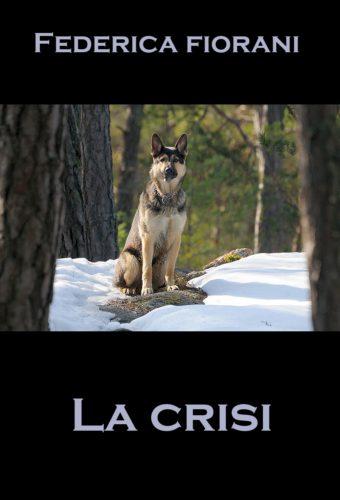 La crisi -racconto di Federica Fiorani
